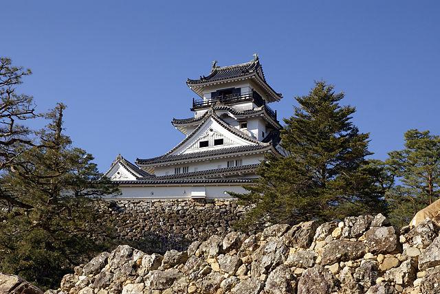 640px-Kochi_Castle04s3872